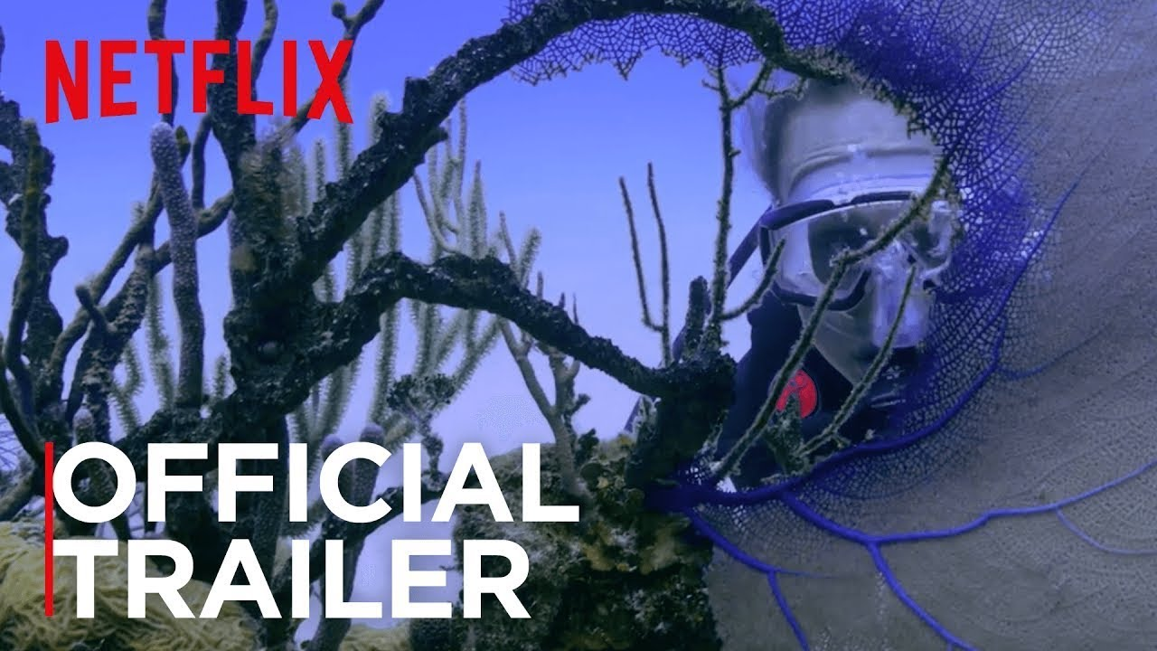 On World Oceans Day, \'Chasing Coral\' trailer shows devastating effects of global warming