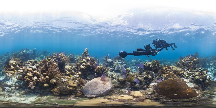 Chasing Coral Producer Jill Ahrens Gets Climate Skeptics and Film Critics Buzzing